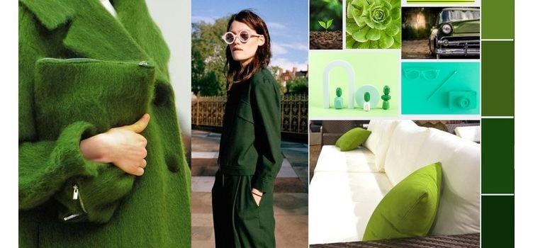 Verde combina com qual cor de roupa? Guia de combinações